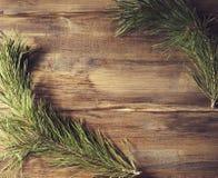 Cadre de fond avec la branche de pin sur le vieux panneau en bois de fond Image libre de droits