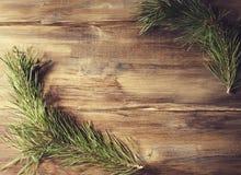 Cadre de fond avec la branche de pin sur le vieux panneau en bois de fond Photo libre de droits