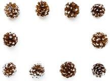 Cadre de fond d'hiver hors des cônes de pin Images libres de droits