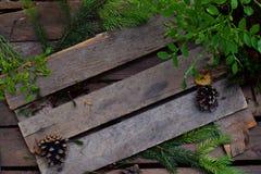Cadre de forêt des branches de sapin, d'un buisson des myrtilles et des cônes sur le fond en bois copiez l'espace pour votre text Photographie stock libre de droits