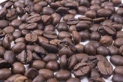 Cadre de grains de café plein Foyer sélectif image libre de droits