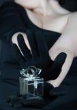 Cadre de Jewelery Images libres de droits