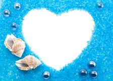 Cadre de mer avec des coquilles de coque, d'isolement Image libre de droits