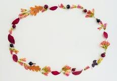 Cadre de nature d'automne dans des tons pourpres photographie stock