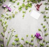Cadre de nature de printemps avec des brindilles de ressort et des fleurs et carte vierge de livre blanc Photographie stock libre de droits