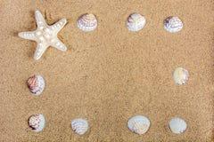Cadre de nature de mer avec des étoiles de mer et des coquilles sur le sable de plage Image libre de droits