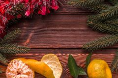 Cadre de Noël avec l'arbre de Noël et mandarines sur le dessus Images libres de droits