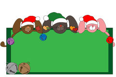 Cadre de Noël de lapin Photographie stock libre de droits