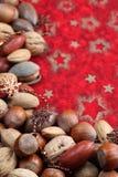 Cadre de Noël de noix Image stock