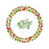 Cadre de nourriture de cerise sur un fond blanc Illustrations d'animation pour l'élément de fruit de conception Travail manuel Photo stock