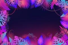 Cadre de palmettes Les usines tropicales de feuille florale de jungle exotique de nuit fleurissent le vecteur de mode de bannière illustration libre de droits
