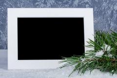 Cadre de photo derrière la branche d'arbres de Noël Photos stock