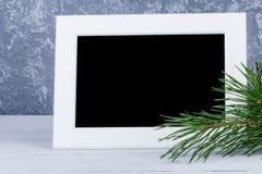 Cadre de photo derrière la branche d'arbres de Noël Photo libre de droits
