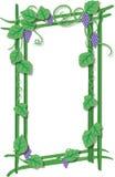 Cadre de plante grimpante Illustration Libre de Droits