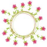 Cadre de rond d'été des fleurs de trèfle sur le fond blanc illustration libre de droits