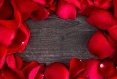 Cadre de Rose Petals rouge fraîche sur Gray Wood Table image stock
