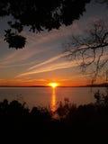 Cadre de silhouette d'arbre de coucher du soleil Photos stock