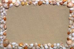 Cadre de tableau de coquillages photographie stock