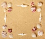 Cadre de tableau de Seashell photographie stock