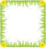 Cadre de tableau, herbe verte Image stock