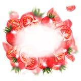 Cadre de tomates d'aquarelle sur le fond blanc images libres de droits