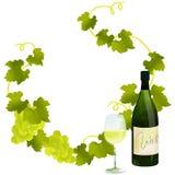 Cadre de vin blanc Photo stock