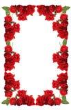 Cadre des roses Photo libre de droits