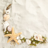 Cadre des seashells Photographie stock libre de droits