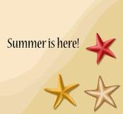 Cadre des textes d'été avec des étoiles de mer illustration de vecteur