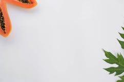 Cadre des textes de feuille de papaye pour votre texte Image libre de droits