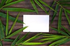 Cadre en bambou de feuille sur le fond en bois rustique Papier blanc en guirlande en bambou de feuille Image stock