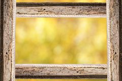 Cadre en bois de bâton et fond jaune unfocused de nature Photo libre de droits