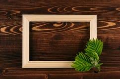 Cadre en bois de photo vide et jeunes feuilles vertes sur le conseil en bois de brun de vintage Le fond décoratif d'été avec l'es photo stock