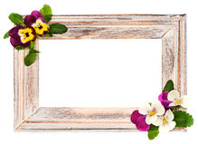 Cadre en bois de vintage avec des fleurs de pensée Image stock