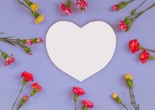 Cadre en forme de coeur de fleurs d'oeillet photos libres de droits