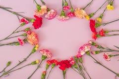 Cadre en forme de coeur de fleurs d'oeillet image stock