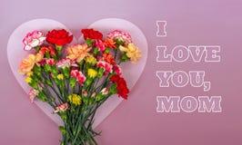 Cadre en forme de coeur de fleurs d'oeillet images stock