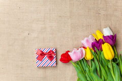 Cadre et fleurs de cadeau Images libres de droits