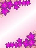Cadre faisant le coin floral de fond Photo stock