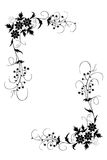 Cadre floral Photos libres de droits