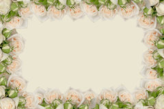 Cadre floral Images stock
