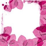 Cadre floral illustration de vecteur