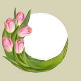 Cadre floral avec les fleurs roses de ressort ENV 10 Photos stock