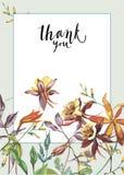Cadre floral avec les fleurs rouges sur le fond clair Design de carte de salutation Inscription - merci EPS10 Images libres de droits