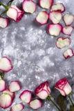 Cadre floral : bouquet des roses blanches roses sur le fond en pierre avec l'espace de copie pour le texte Photographie stock