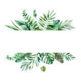 Cadre floral coloré avec les feuilles tropicales colorées illustration stock