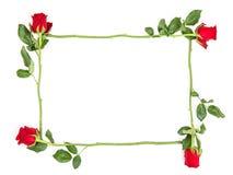 Cadre floral de fleur de configuration d'appartement de roses rouges Photos libres de droits
