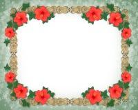 Cadre floral de ketmie illustration de vecteur