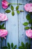Cadre floral de roses roses romantiques sur le gris, fond en bois peint Photographie stock libre de droits