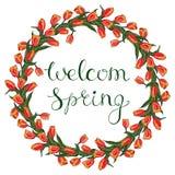 Cadre floral de vecteur avec la tulipe rouge illustration libre de droits